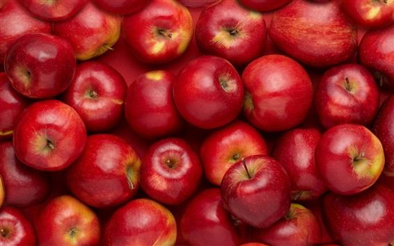 배경 화면 많은 빨간 사과, 달콤한 과일