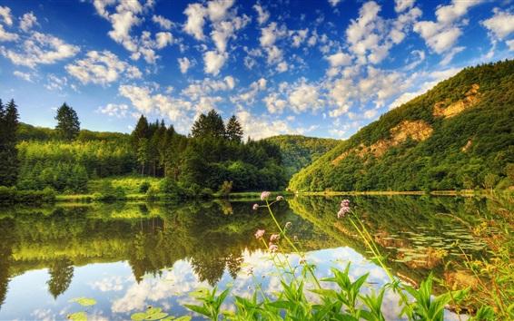 배경 화면 산, 잔디, 호수, 나무, 구름, 하늘, 여름