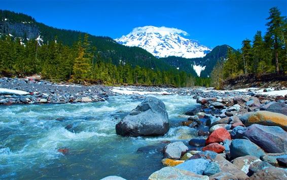 Fond d'écran Montagnes, arbres, rivière, pierres