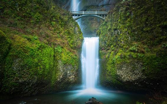 Обои Водопады Мултнома, водопад, мост, сумерки, Орегон, США
