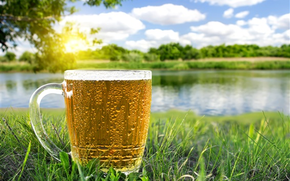 Wallpaper One cup of beer, grass, river