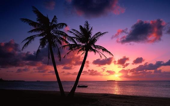 Papéis de Parede Par, palma, árvores, mar, costa, pôr do sol, Nuvens, vermelho, céu