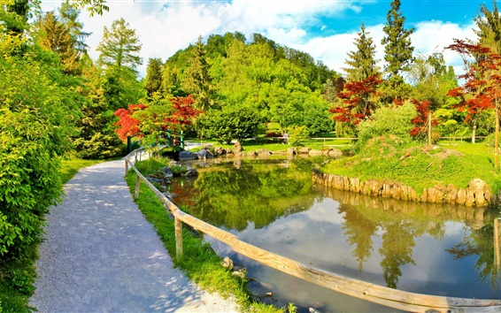 Wallpaper Park, path, pond, trees, sunny day