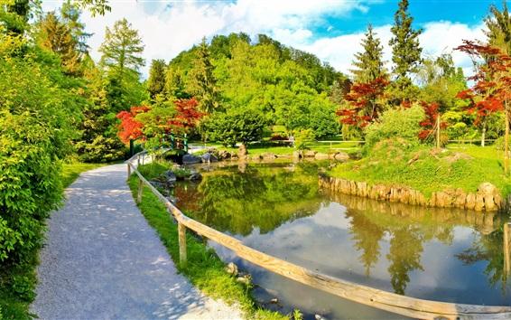 壁紙 公園、パス、池、木、晴れた日