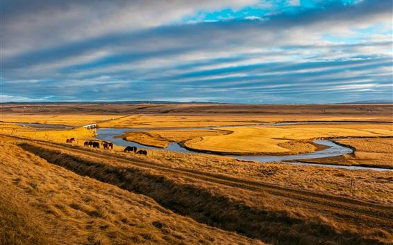Papéis de Parede Pasto, cavalos, rio, grama, céu, nuvens