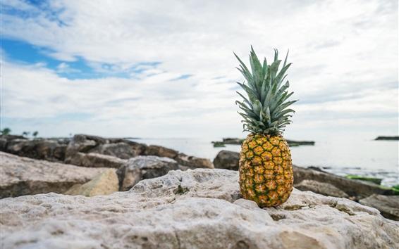 Wallpaper Pineapple, stones, rocks, sea