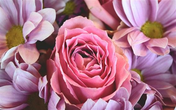 Fondos de pantalla Flores rosadas de la rosa y de la margarita