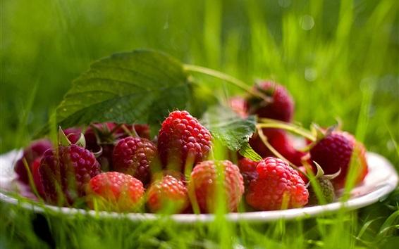 Wallpaper Raspberry, grass