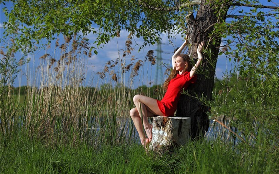 Wallpaper Red dress girl sit under tree