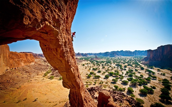 Wallpaper Rock climbing, extreme sport, cliff, trees