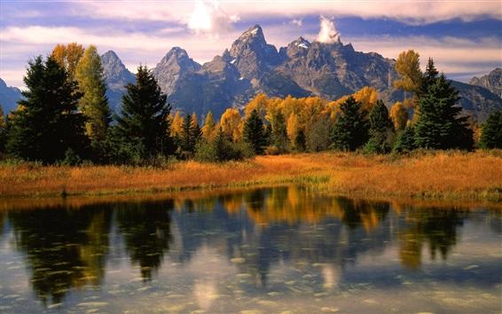 Fond d'écran Ecosse, nature, lac, montagnes, arbres, herbe