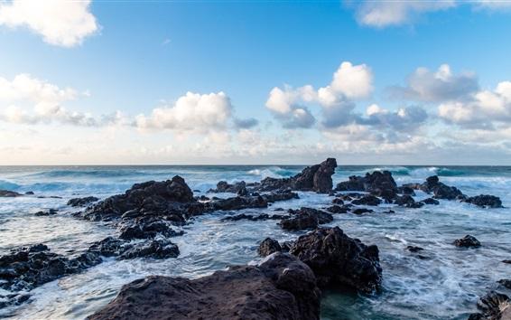 Wallpaper Sea, rocks, coast, nature