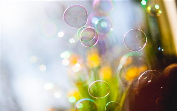 Fond d'écran Les bulles de savon volent, floues