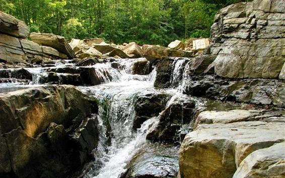 Wallpaper Stones, stream, trees