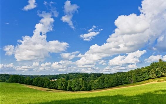 Fond d'écran Eté, nature, pré, arbres, nuages, ciel bleu