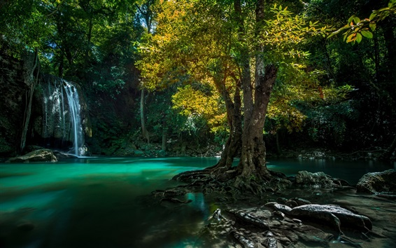 Wallpaper Thailand, waterfall, trees, creek