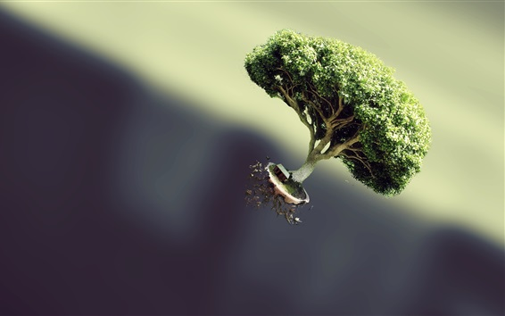 Wallpaper Tree flying, hut, creative picture