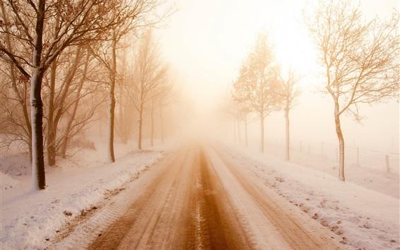 Wallpaper Winter, road, snow, trees, fog, morning