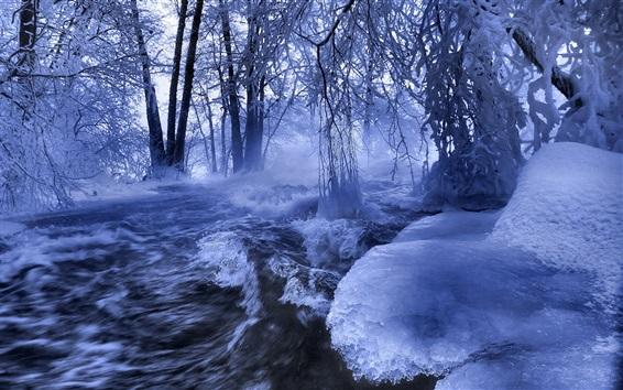 Papéis de Parede Inverno, neve, rio, árvores, gelo, congelado