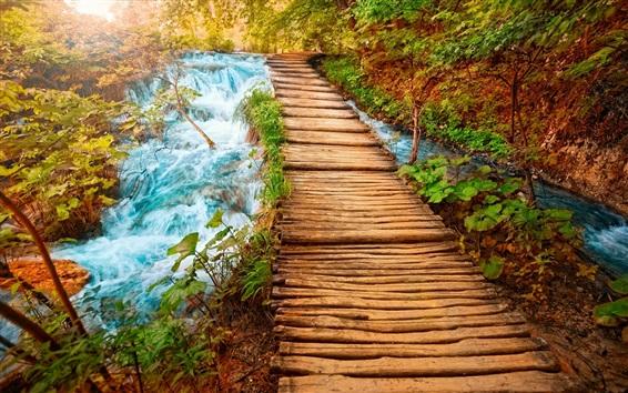 Wallpaper Wood bridge, path, nature, stream