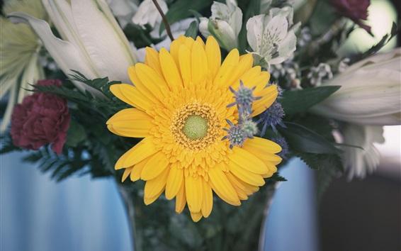 Wallpaper Yellow daisy flower, bouquet