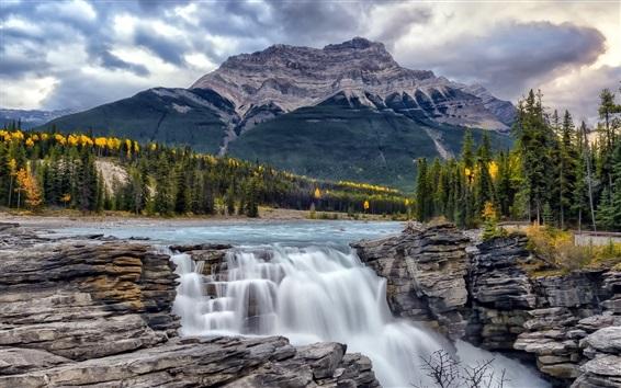 Wallpaper Athabasca Falls, Alberta, Canada, trees, mountains