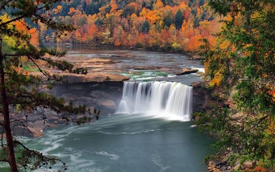 Wallpaper Autumn, trees, waterfall, USA