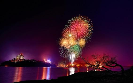 Wallpaper Beautiful fireworks, night, river, city, lights