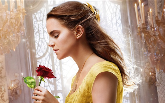 Wallpaper Beauty and the Beast, Emma Watson, rose, Disney movie
