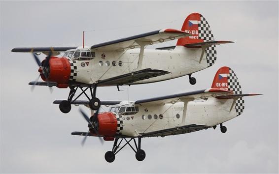 Fond d'écran Vol de biplan, avion polyvalent