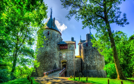 Wallpaper Castell Coch, castle, grass, trees, UK, South Wales