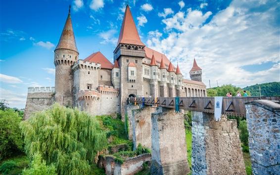 Fond d'écran Château, pont, arbres, nuages, touristes