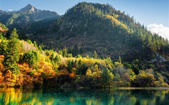 Wallpaper China, Jiuzhaigou, trees, mountains, lake, autumn