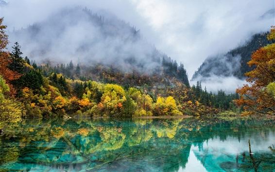 Fond d'écran Chine nature paysage, automne, montagnes, arbres, lac, brouillard