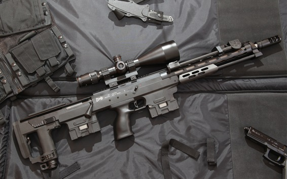 Wallpaper DSR-1 sniper rifle, weapon