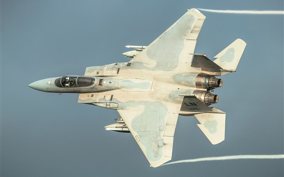 Wallpaper F-15C fighter flight in sky
