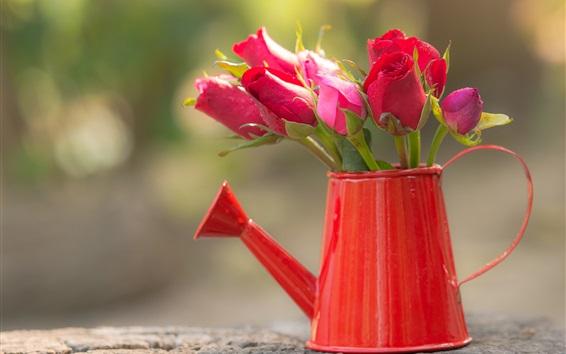 Fondos de pantalla Frescas rosas rojas, olla de agua