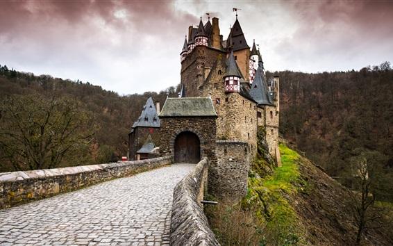 Wallpaper Germany, ELTZ castle, gate, forest