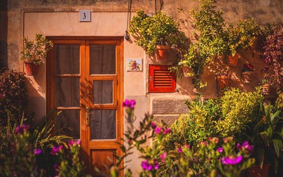 Обои Дом, дверь, цветы
