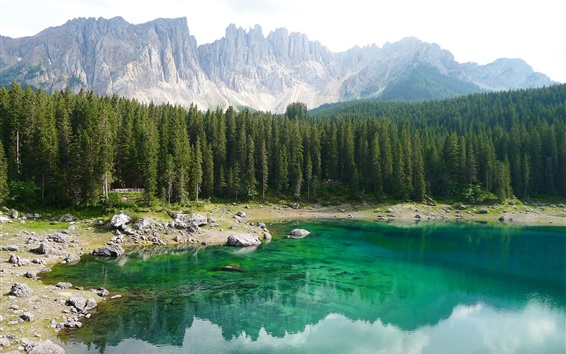 Wallpaper Italy, South Tyrol, Dolomites, forest, trees, mountains, lake