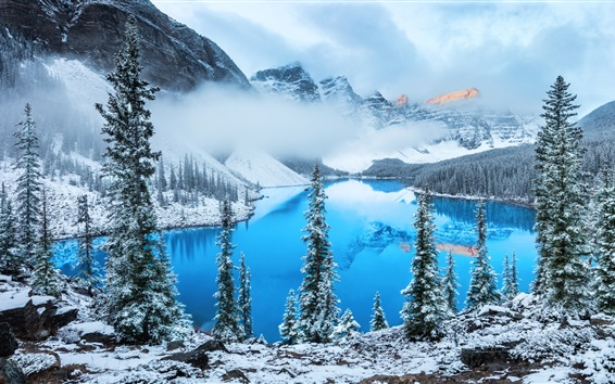 Wallpaper Lake, trees, snow, winter, fog, clouds, mountain
