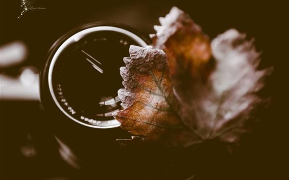 Wallpaper Leaf, lens