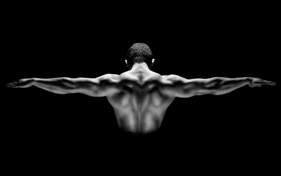 Wallpaper Man muscular show, back view, black background