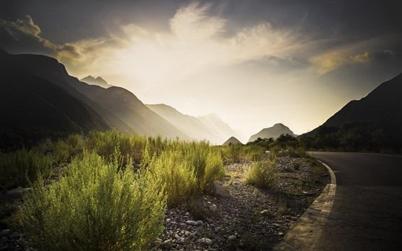 Обои Утро, трава, горы, дорога, туман