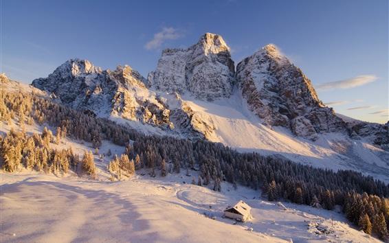 Fond d'écran Montagnes, maison, arbres, hiver, neige
