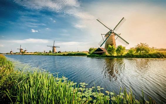 Wallpaper Netherlands, river, windmill, grass, beautiful scenery