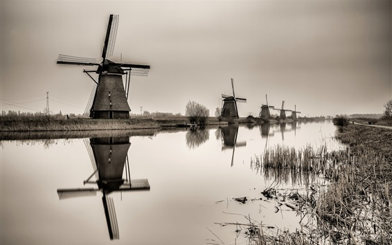 Wallpaper Netherlands, windmill, river, black and white
