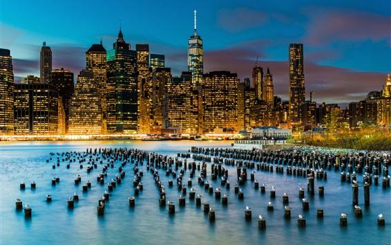 Wallpaper New York, skyscrapers, river, stumps, seagulls, USA