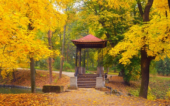 Wallpaper Park, autumn, trees, gazebo, yellow leaves