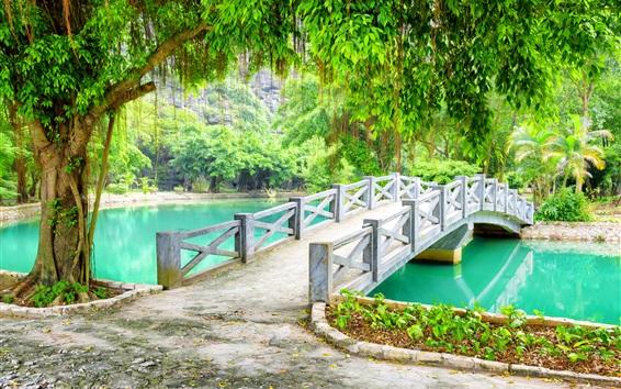 Fond d'écran Parc, pont, arbres, lac, Vietnam